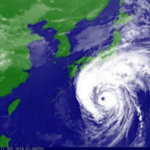 台風来襲の日( ̄ー ̄)