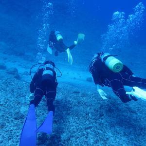 【 沖縄 】宮古島2 ダイビング Wアーチ