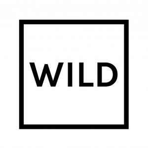 【PSO2チームメンバー募集中!】愉快なワイルド団w