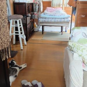 玄関前に布団を敷いて寝る、狭い家なのでこういうのも有り