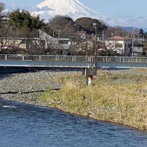 新春の富士です!