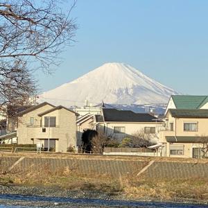 1月19日朝の富士山!