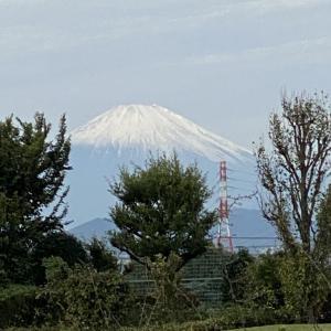 綺麗な富士山でした。