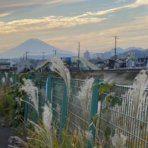 11月30日 夕刻の富士山!