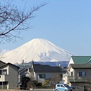 1月25日 富士山と大山!