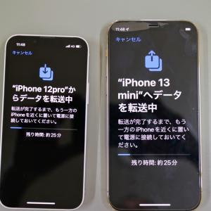 iPhone13 mini