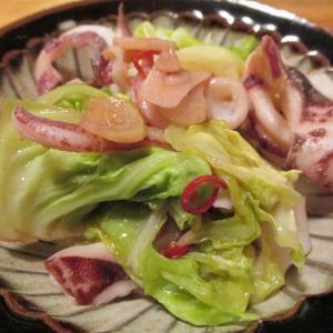 【旨魚料理】ヤリイカと春キャベツのぺペロン煮