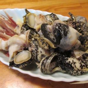 【旨魚料理】真ツブの刺身