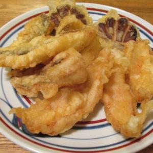 【旨魚料理】ムシガレイの天ぷら