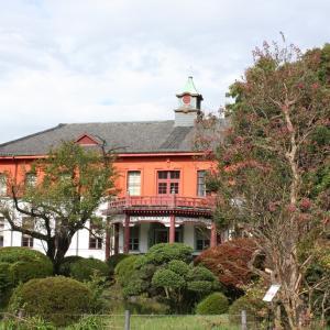 【お散歩】小石川植物園