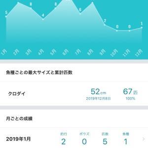 2019年!チャントーのチヌ釣り記録とまとめ(^^)