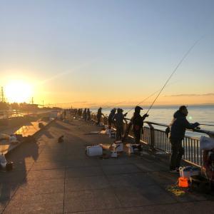 新年明けまして初チヌ釣り in 関東・川崎遠征