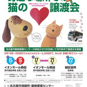 ◆土日は連続譲渡会◆2月16日(日) 名古屋市熱田区譲渡会 参加猫紹介