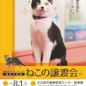 8月1日(土) 名古屋市動物愛護センター 譲渡会
