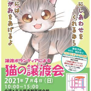 名古屋市主催 7月4日 猫の譲渡会 ご案内