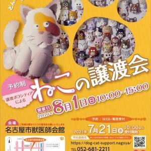 名古屋市主催 猫の譲渡会 8月1日(日) ご案内
