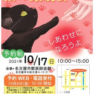 ★みなと猫の会は午前中参加★名古屋市主催 猫の譲渡会 10月17日(日) ご案内