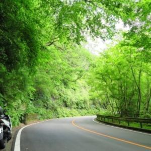 箱根と丹沢湖へ朝ツー(2020.5.24走行)