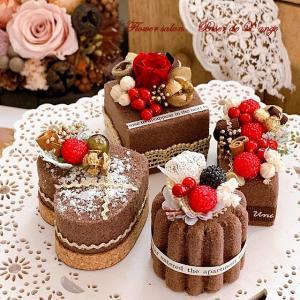 今度はチョコレート色のプチケーキ