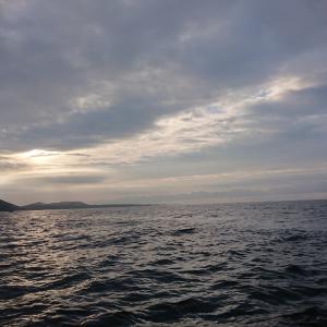 5/23 志摩沖釣果報告