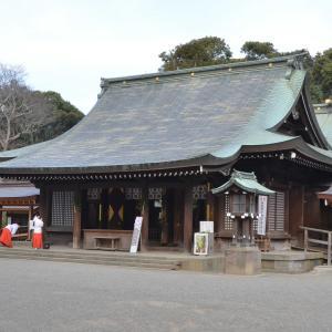 2019.3.20 蜻蛉19-7 Dragonfly 19 - 7-b 3月の氷川神社遊泳       Hikawa Shrine swimming in March