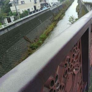 【写真付き】台風から二日、稲田堤付近はこうなりました・・・各地の被災状況を見ると、つらいものがありますが・・・