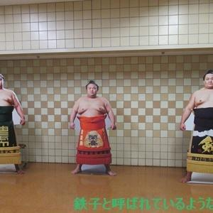2020年11月・2020年 大相撲11月場所 その10