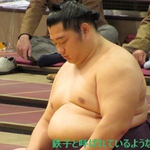 2020年11月・2020年 大相撲11月場所 その14