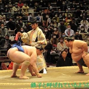 2020年11月・2020年 大相撲11月場所 その15