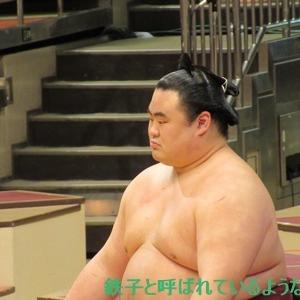 2020年11月・2020年 大相撲11月場所 その19