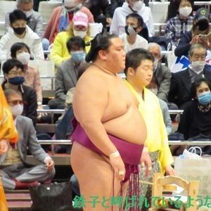 2020年11月・2020年 大相撲11月場所 その20