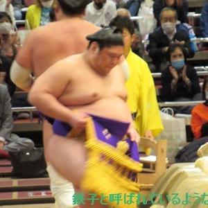 2020年11月・2020年 大相撲11月場所 その23