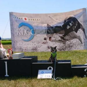 KLCC熱いですよ!お盆ですよ!100m走りきれますか!!表彰式。