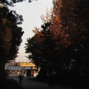 鶴見線103系 鶴見川口駅への貨物支線 1996-11-22