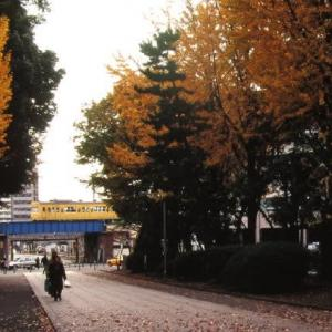 鶴見線103系 黄色の共演 1996-11-23