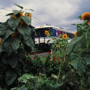 因美線キハ181系 特急いなばVS急行つやま 1998-07-27