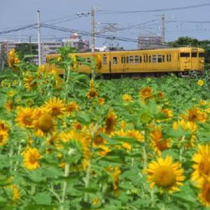 乗り鉄活動 川崎から中央本線経由で米原へ 1989-08-26