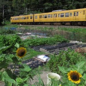 乗り鉄活動 中国山地のローカル線に乗車 1989-08-28