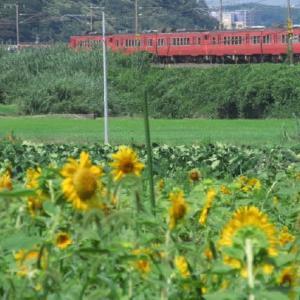 乗り鉄活動 18きっぷ乗りっぱなしの旅 1989-08-29