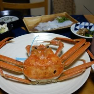 11月の日本海で遊んでた!荒海ヘーキ