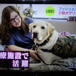 元大統領の介護犬の新しい任務(^^)v