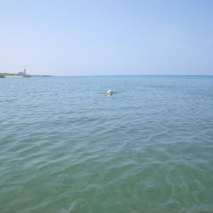 夏🍉と言えば海で泳ぐ!でしょ (^^)v