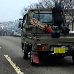 おお、トラックに熊が乗ってる。(^^)v