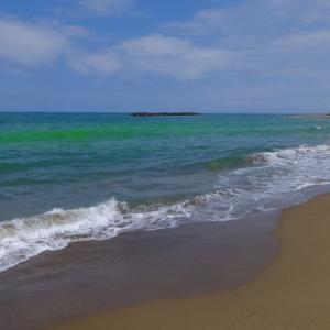 久しぶりの海だよ、気持ちいいね。