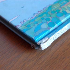 【本の簡単な修理方法】実用的で頼りになる1冊を購入。