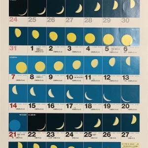 オオクワ灯火採集に向けた  moon age『月齢カレンダー』 2020年度