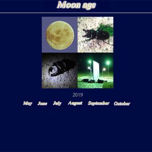 moon age『月齢カレンダー』 2019/08月 +α