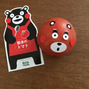 なす・トマト♡熊本県産野菜セット