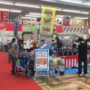 めだかの城イベント @アグロ神戸星陵台店