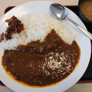 ☆ 晋太の 昼飯ひとり飯 大賞 <2019> ☆